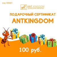 Подарочный сертификат на 100 руб.